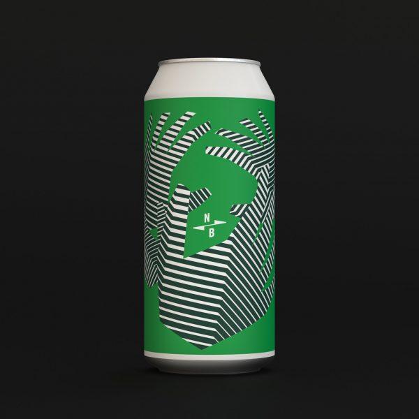SOMEHOW LOSE GLASS NZ IPA